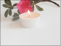4 Picculis candles fragrance SOUS LA TONNELLE