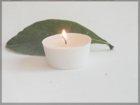 4 Picculis candles fragrance YLANG YLANG