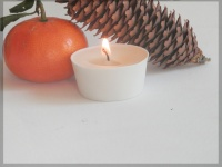 4 Picculis candles fragrance ZEST & CEDRES